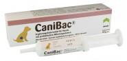CaniBac Gel