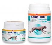 Caniviton Forte Plus