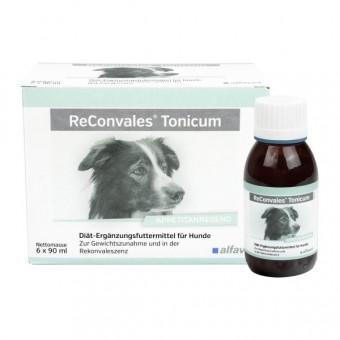 ReConvales Tonicum Hund