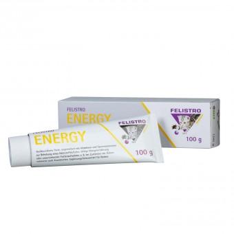 Felistro Energy
