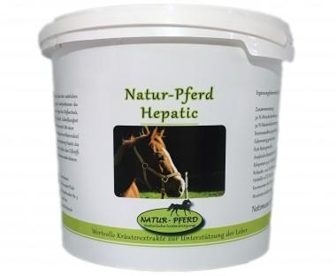 Natur-Pferd Hepatic