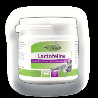 Lactofeline