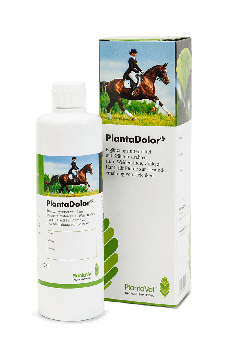 PlantaDolor