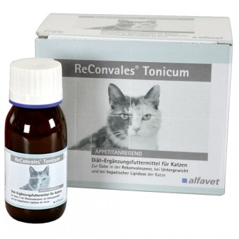 Reconvales Tonicum Katze