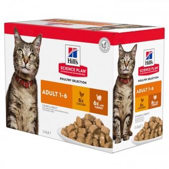 Hills Science Plan Feline Adult Frischebeutel Huhn & Truthahn