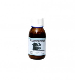 ReConvales Tonicum Hund - 1 x 90ml