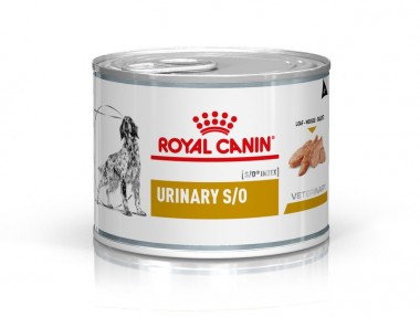 Royal Canin Urinary S/O Hund Mousse