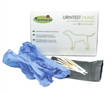 Urintest Hund