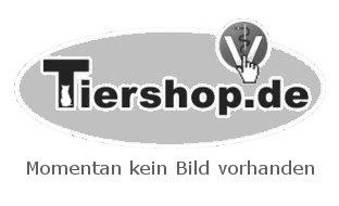 Cosequin Katze