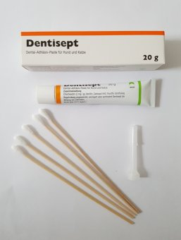 Dentisept Paste -  Set nach Dr. Flöck