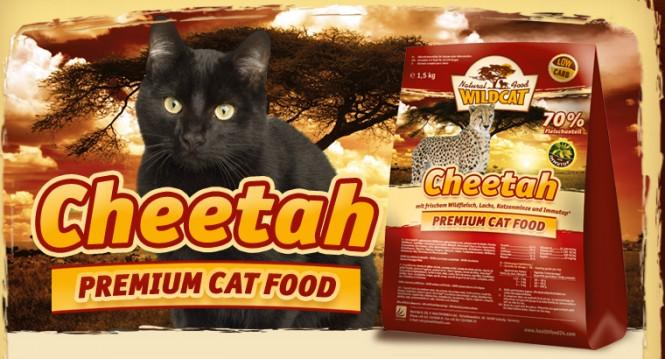 WildCat Cheetah