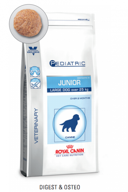 Royal Canin Junior Large Dog