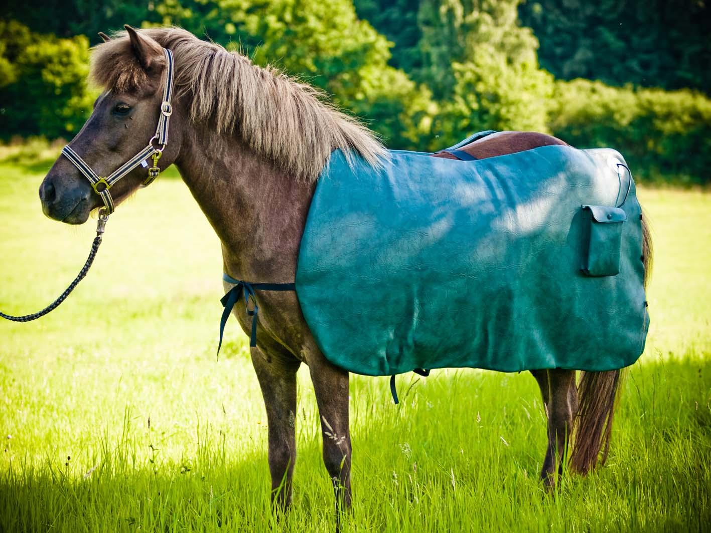 MagMobil-Horse