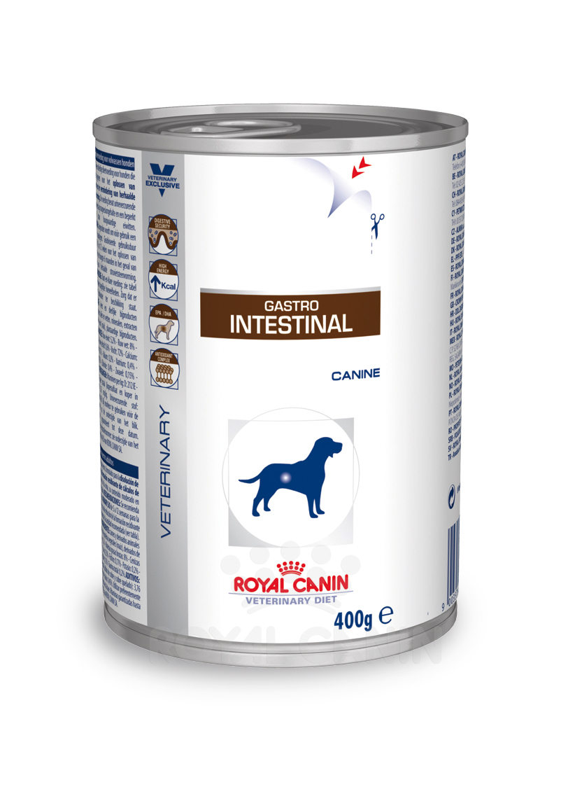 Royal Canin Gastro Intestinal 1 Dose je 400g