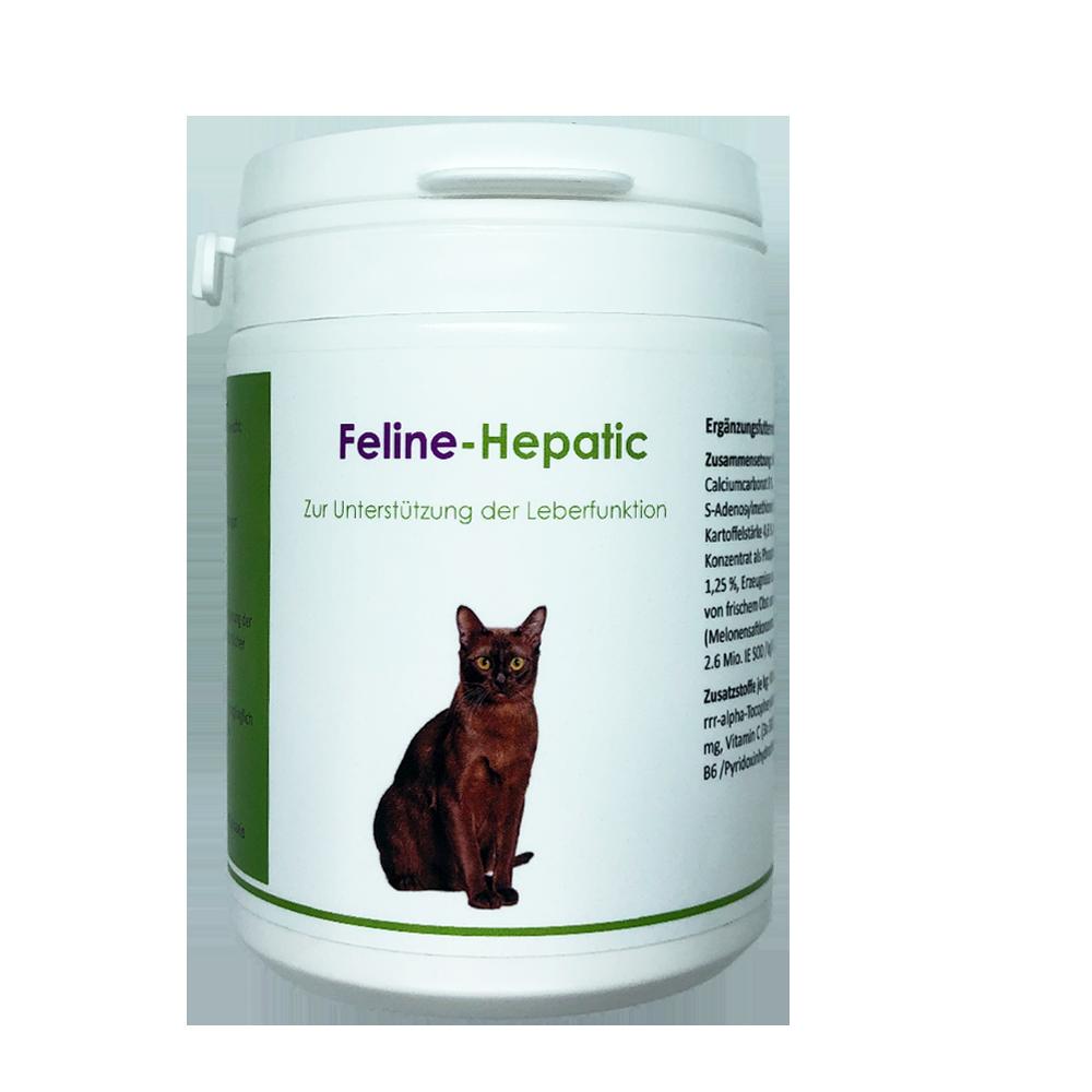 Feline-Hepatic