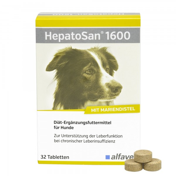 HepatoSan 1600 120 Tabletten