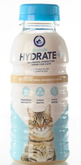 Oralade Hydrate + Katze