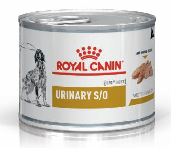 Royal Canin Urinary S/O Hund Mousse 1 Dose je 200g