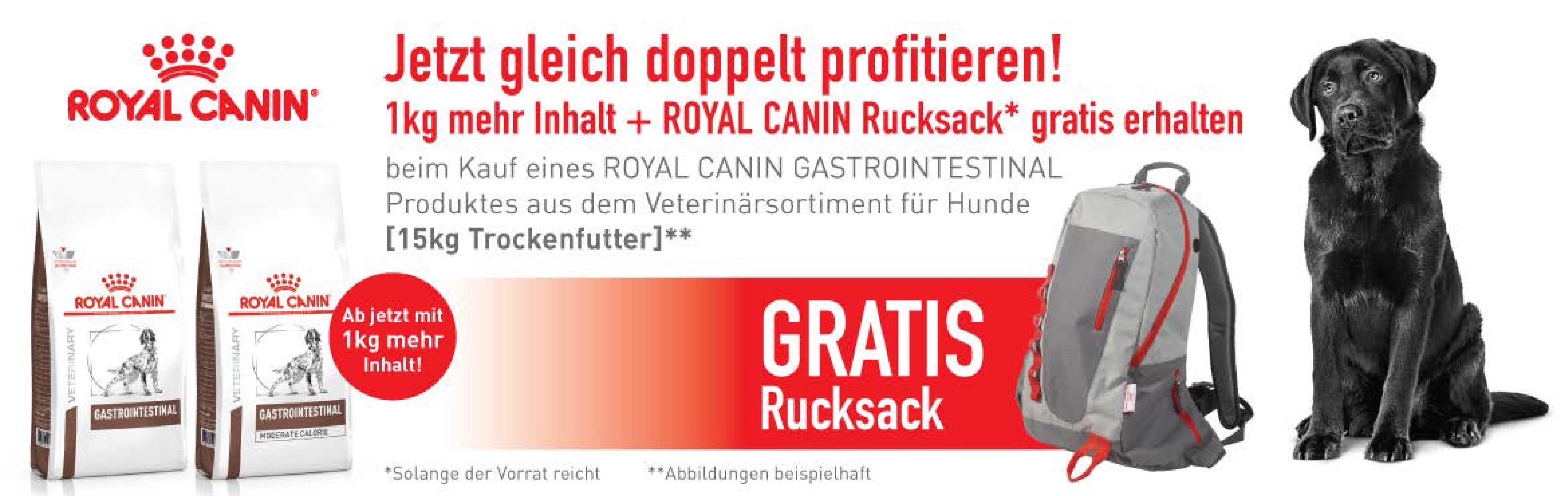 Banner 96 - RC Rucksack