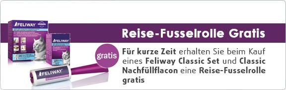 Banner 38 - Feliway August 16 Aktion