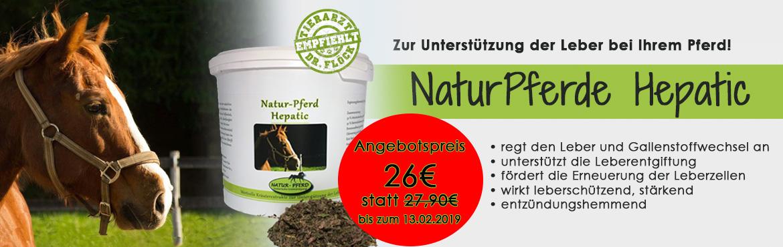 Banner 54 - Natur-Pferd Hepatic