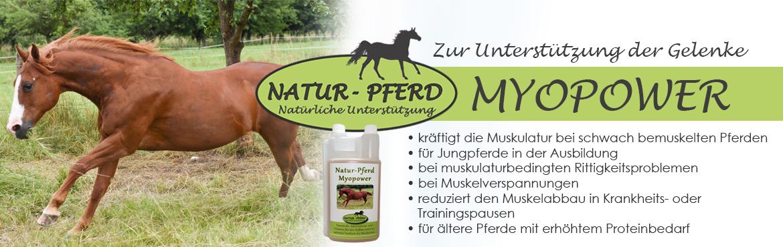 Banner 58 - Natur-Pferd Myopower