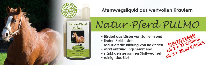 Banner 50 - Natur Pferd Pulmo