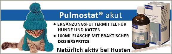 Banner 41 - Pulmostat