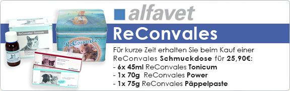 Banner 35 - ReConvales Schmuckdosen Aktion