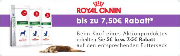 Banner 30 - RC Rabatt Aktion (März 2016)