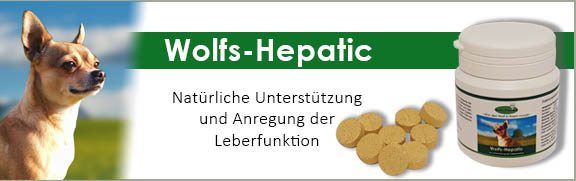 Banner 42 - Wolfs-Hepatic