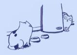 Feliway bei Katzengruppen